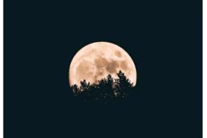 月の土地を購入すると値段はいくらに?買う方法や税金まで