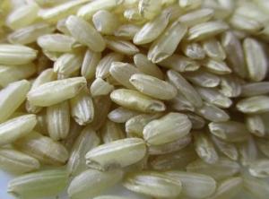 玄米ダイエットで即効で効果が出る方法は?口コミや7号食も紹介!